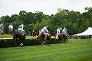 April 29, 2017, 22nd annual Queen's Cup Steeplechase. Racing action