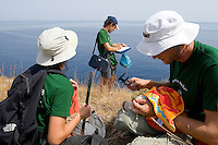 Researchers from the Hellenic Ornithological Society (HOS) collecting data from a colony of Eleonora's falcon, Andros, Greece