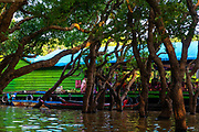 Tourist boarding area for a boat ride through the flooded forest south of Kampong Phluk, Cambodia.