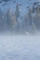 Foggy winter morning in the Methow Valley near Mazama, North Cascades Washington