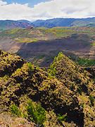 View over Waimea Canyon, Kauai, Hawai'i, USA.