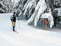 a woman cross country skis on a groomed ski trail past a sign along the Mount Tahoma Trails hut to hut ski trail system near Mount Rainier in the Cascade Range, Ashford, WA, USA