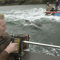 Dingle musician Seamus Begley arouses Fungi's curiousity with his Irish music.<br /> Picture by Don MacMonagle