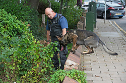 © Licensed to London News Pictures 15/09/2021. <br /> Bromley, UK, A police search dog looking for evidence. A 51 year old man has been stabbed to death in Bromley, Greater London last night. Met police were called at 10.51pm and discovered the victim with multiple wounds. Photo credit:Grant Falvey/LNP