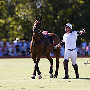 'A Day at the Polo'<br /> An English player changes horses during the International Polo Test match between Australia and England at the Windsor Polo Club, Richmond, Sydney, Australia on March 29, 2009. Australia won the match 8-7.  Photo Tim Clayton