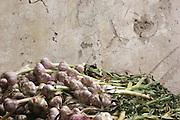 garlic stall at Netanya market, Israel