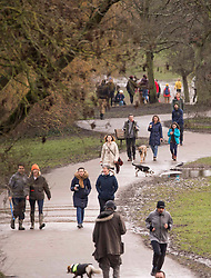 © Licensed to London News Pictures.28/01/2021, London,UK. Members of the public enjoy walking around Hampstead Heath in north London during the third national lockdown. Photo credit: Marcin Nowak/LNP