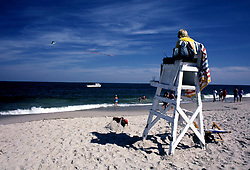 D. Ross Cameron 8/86<br /> <br /> A lifeguard keeps an eye on the surf as an advertising plane flies by the Henlopen Acres Beach Club in Rehoboth Beach, Del.