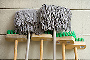 brooms and mops placed against a wall to dry