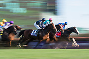 November 3, 2018: Breeders' Cup Horse Racing World Championships. Hunting Horn, Enable and Talismanic gallop past the wire in the Breeders' Cup turf.