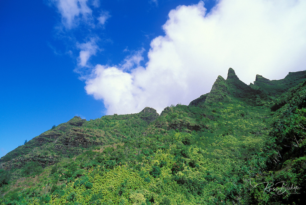 Lush tropical canyons and spires along the Kalalau Trail on the North Shore, Na Pali Coast, Kauai, Hawaii