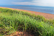 Sand dunes along the Northumberland Strait