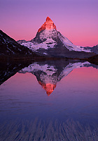 """Matterhorn 4,478 m, SWITZERLAND/ RIFFEL LAKE, ZERMATT, VALAIS. Mount Matterhorn, here mirrored in the Riffel Lake at Zermatt, is """"The Iconic Alp"""" and a true European symbol, one of the World's most well known mountain silhouettes. It is a mountain of superlatives and among other things, inspired the shape of Toblerone chocolate. In French it is called Mont Cervin and in Italian Monte Cervino. Climate change is enabling lower-altitude species conquer higher and higher ground, out-competing the high altitude species, many of which have their last refuges high up in the mountains of Central and Eastern Europe, Matterhorn, Switzerland"""