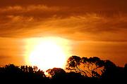 Orange Sunset - Tasmania
