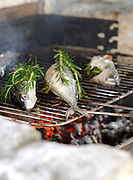 Fish on the grill at Le Domaine de Foncaudiere, France