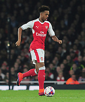 Football - 2016 / 2017 League [EFL] Cup - Fourth Round: Arsenal vs. Reading<br /> <br /> Chris Willock of Arsenal  at The Emirates.<br /> <br /> COLORSPORT/ANDREW COWIE