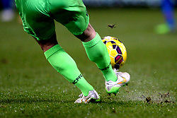 Detail of the boots of Crystal Palace goalkeeper Julian Speroni