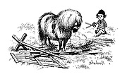 (child with pony with long fringe who has broken jump)