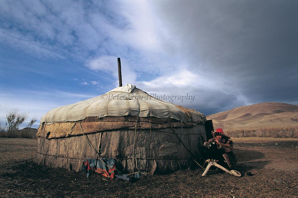 Kazakh & Golden eagle at ger<br /> (Aquila chrysaetos)<br /> eagles used for hunting<br /> Western Mongolia