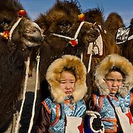 Mongolia . portrait of children during the Camel festival. Gobi desert.  Bulgan -