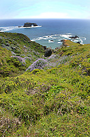 Pacific Coastline near the estuary of Russian River at Jenner, Sonoma County, California, USA. 201304292075<br /> <br /> Copyright Image from Victor Patterson, 54 Dorchester Park, Belfast, UK, BT9 6RJ<br /> <br /> Tel: +44 28 9066 1296<br /> Mob: +44 7802 353836<br /> Voicemail +44 20 8816 7153<br /> Skype: victorpattersonbelfast<br /> Email: victorpatterson@me.com<br /> Email: victorpatterson@ireland.com (back-up)<br /> <br /> IMPORTANT: If you wish to use this image or any other of my images please go to www.victorpatterson.com and click on the Terms & Conditions. Then contact me by email or phone with the reference number(s) of the image(s) concerned.