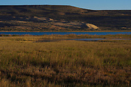 Landscape photography of the Semi-desert lake wetlands, Inner Mongolia, China