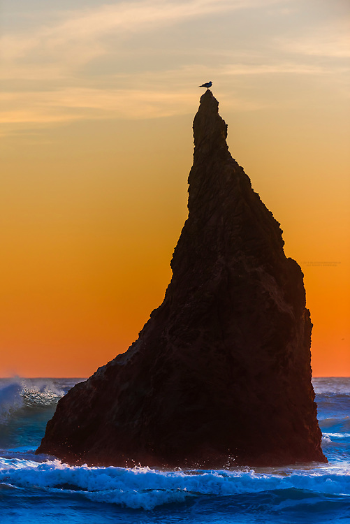 Wizards Hat (sea stack) at Bandon Beach, Oregon USA.