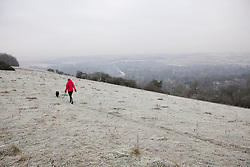 © Licensed to London News Pictures. 13/12/2012. Streatley, UK. A lady walks her dog in freezing temperatures on a frosty Streatley Hill. Photo credit : Rebecca Mckevitt/LNP