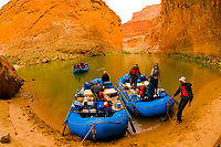 Whitewater rafting trip (oar trip) on the Colorado River in Marble Canyon at Redwall Cavern, Grand Canyon National Park, Arizona USA