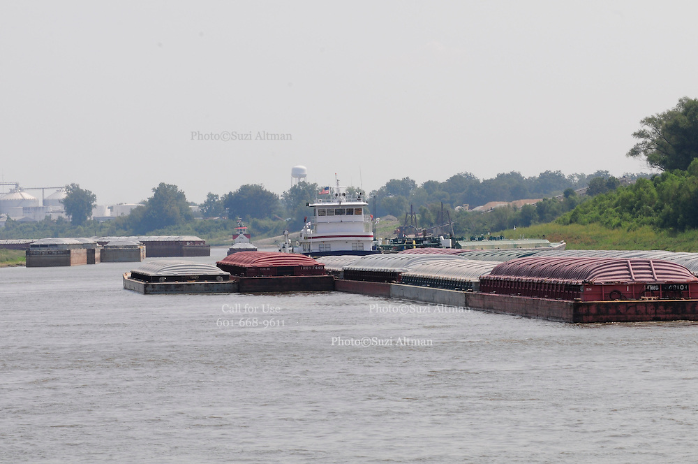 {8/24/12} {10pmCST} Greenville , MS, U.S.A.Barges clog up the river banks on the Mississippi River outside of Greenville MS, where the river is so low the US Army Corp of Engineers is dredging the river 24hours a day to keep the traffic flowong on the river Friday August 24,2012. the Sandbars creep up as the water level drops on the Mississippi River makeing navigating the Mississippi River difficult for tug boat captains Ron Mook , Friday August 24,2012. Historically low river levels on the Mississippi River are causing havoc on river traffic: grounding barges loaded with grain and fertilizer, traffic jams several miles long and forcing the Coast Guard to close down chunks of the river due to groundings. The area around Greenville, Miss., has closed three times the past week due to groundings. Last year, there were five total groundings the entire low-water season. Locals who fought historic high-water floods last year are this year engaged in a different fight: keeping barges afloat on a vanishing Mississippi.  -- Photo by Suzi Altman, .