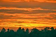 Nederland, Nijmegen, 2-8-2020 Ondergaande zon . Rode, bloedrode, lucht . Foto: ANP/ Hollandse Hoogte/ Flip Franssen