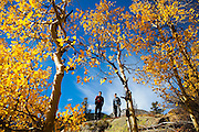 Obadiah Reid (left) and David Coffey explore an aspen grove (Populus tremuloides) above Big Thompson River, Rocky Mountain National Park, Colorado.