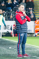 Football - 2017 / 2018 Premier League - Swansea City vs. Crystal Palace<br /> <br /> Swansea City acting manager Leon Britton on the touchline, at the Liberty Stadium.<br /> <br /> COLORSPORT/WINSTON BYNORTH