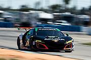 March 16-18, 2017: Mobil 1 12 Hours of Sebring. Michael Shank Racing w/Curb-Agajanian, Acura NSX GT3, Oswaldo Negri Jr, Tom Dyer