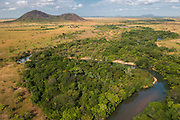 Saddle Mountain Ranch<br /> Savanna <br /> Rurununi<br /> GUYANA<br /> South America,<br /> cattle