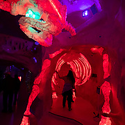 The interior of Meow Wolf's House of Eternal Return in Santa Fe, New Mexico. Meow Wolf in an interactive art exhibit that centers around a mystery of a family home with passages to other worlds. Nathan Lambrecht/Journal Communications
