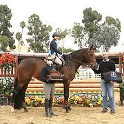 SFHJA 17 & Under Medal Final