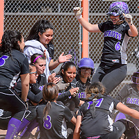 041115       Cable Hoover<br /> <br /> Miyamura Patriot Katlynn Silva (6) is congratulated by her teammates as she tags the plate on a home run hit against the Gallup Bengals Saturday at Gallup High School.