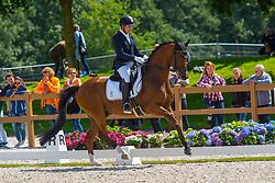 Jurado Lopez Severo Jesus, ESP, Quel Filou<br /> Longines FEI/WBFSH World Breeding Dressage Championships for Young Horses - Ermelo 2017<br /> © Hippo Foto - Leanjo de Koster<br /> 03/08/2017