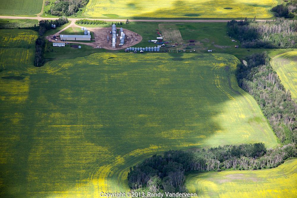 Wanham area, AB<br /> 13-07-14<br /> Randy Vanderveen<br /> Aerial photographs