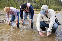 Panning for gold at a placer mine in the Klondike near Dawson City, Yukon