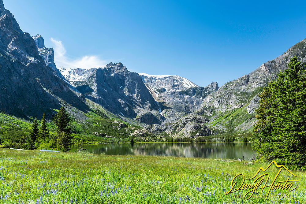 Mountain meadow at East Rosebud Lake High in the Beartooth Mountains of Southwest Montana.