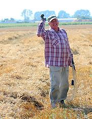 Polish Wheat Harvest 2017