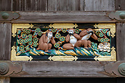 """The maxim """"see no evil, hear no evil, speak no evil"""" was popularized from the 1600s carving of the proverbial three wise monkeys on a storehouse in Toshogu shrine in Nikko, Japan. One interpretation is to be of good mind, speech and action. But in the Western world, the phrase often refers to those who deal with impropriety by turning a blind eye. The monkeys are Japanese macaques, a common species in Japan. The three monkeys are Mizaru, covering his eyes, who sees no evil; Kikazaru, covering his ears, who hears no evil; and Iwazaru, covering his mouth, who speaks no evil. Outside of Japan, the last two of the monkeys' names have sometimes been corrupted, resulting in Mizaru, Mikazaru and Mazaru. Hidari Jingoro may have carved these panels to incorporate Confucius's Code of Conduct, using the monkey as a way to depict man's life cycle. Out of eight panels, the iconic three wise monkeys are panel 2. The philosophy likely originated with a Tendai-Buddhist legend, from China in the 700s (Nara Period). The figures may represent the three dogmas of the so-called middle school of the sect. Toshogu Shrine is the final resting place of Tokugawa Ieyasu, the founder of the Tokugawa Shogunate that ruled Japan for over 250 years until 1868. Ieyasu is enshrined at Toshogu as the deity Tosho Daigongen, """"Great Deity of the East Shining Light"""". Initially a relatively simple mausoleum, Toshogu was enlarged into the spectacular complex seen today by Ieyasu's grandson Iemitsu during the first half of the 1600s. The lavishly decorated shrine complex consists of more than a dozen buildings set in a beautiful forest. Toshogu contains both Shinto and Buddhist elements, as was common until the Meiji Period when Shinto was deliberately separated from Buddhism. Toshogu is part of Shrines and Temples of Nikko UNESCO World Heritage site."""