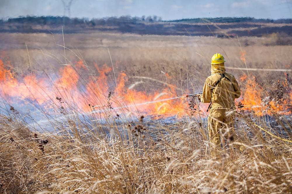 Spraying embers that have jumped the blackened fire line.