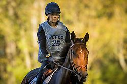 Gabriel Valentine (BEL) - Cartoon Chavannais<br /> Cross country 6 years old horses<br /> Mondial du Lion - Le Lion d'Angers 2014<br /> © Dirk Caremans<br /> 18/10/14