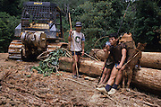 LOGGING, NOMADIC PENAN, MALAYSIA. Sarawak, Borneo, South East Asia. Tropical rainforest and one of the world's richest, oldest eco-systems, flora and fauna, under threat from development, logging and deforestation. Home to indigenous Dayak native tribal peoples, farming by slash and burn cultivation, fishing and hunting wild boar. Home to the Penan, traditional nomadic hunter-gatherers, of whom only one thousand survive, eating roots, and hunting wild animals with blowpipes. Animists, Christians, they still practice traditional medicine from herbs and plants. Native people have mounted protests and blockades against logging concessions, many have been arrested and imprisoned.