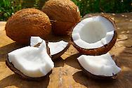 Half fresh coconut