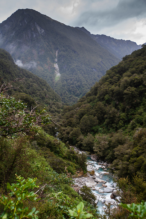 River winds its way through dense bush in the Haast National Park, with towering mountains in the background.