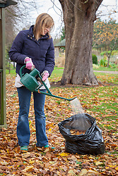 Making leaf mould using a bin bag - watering